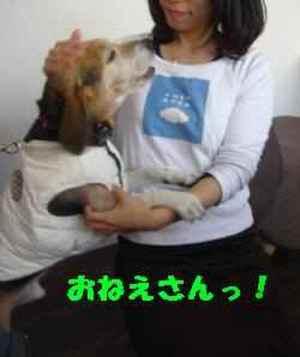 20081206_012_1_2