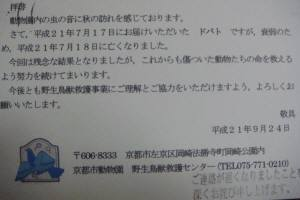 20090925_034_1