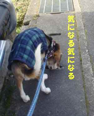 20100114_010_1