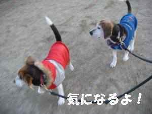 20100116_030_19