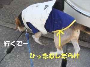 20100118_004_13