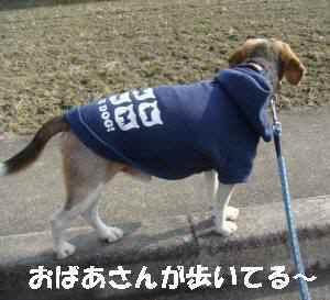 20100120_009_15