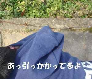 20100120_016_18