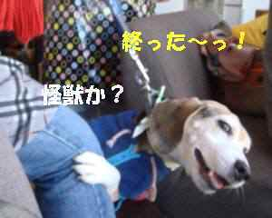 20100124_076_19