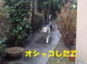 20100128_002_12