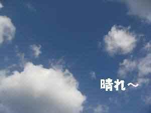 20100129_003_12