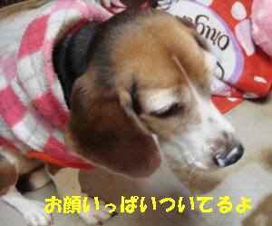 20100131_033_18