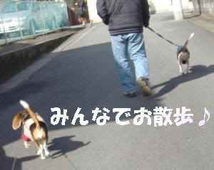 20100207_052_16