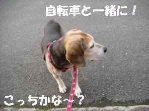 20100208_012_18_2