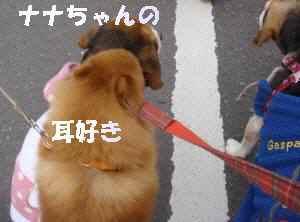 20100214_082_111