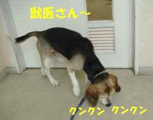 20100305_013_12