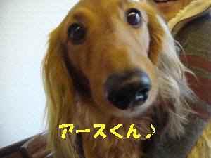 20100307_052_110