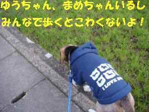 20100310_018_111