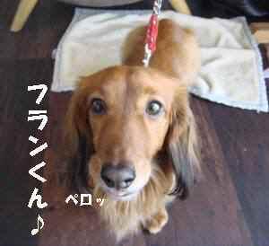 20100314_025_17
