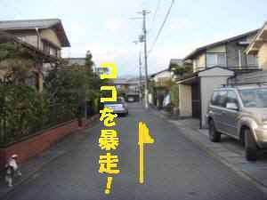 20100321_037_18