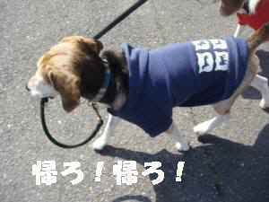 20100327_024_14