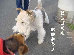 20100328_001_11