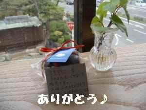 20100328_022_16