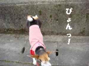 20100331_010_13