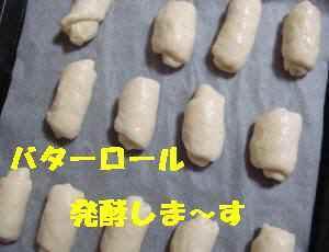 20100401_005_15