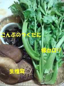 20100401_014_18