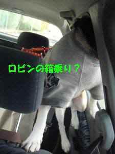 20100403_030_17