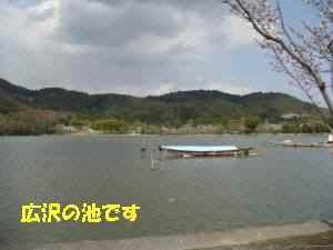 20100403_043_114