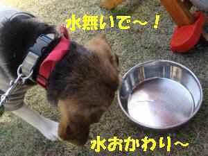 20100404_055_110