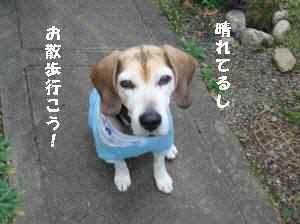 20100406_004_12