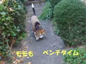 20100408_006_14