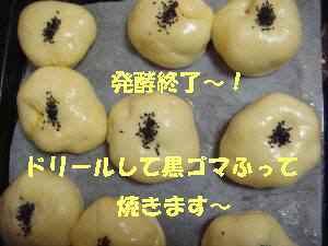 20100408_010_17
