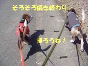 20100408_014_18