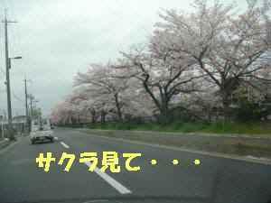 20100409_014_14