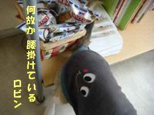 20100409_022_18