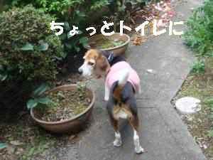20100414_001_1