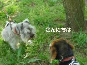 20100502_100_18