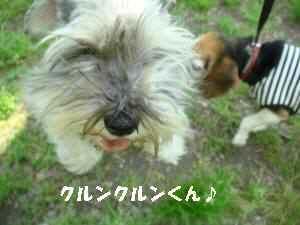20100502_104_19