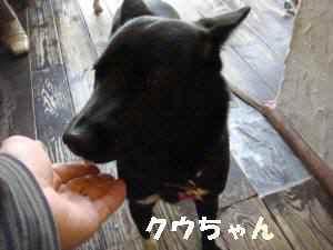 20100503_130_114