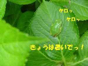0820100517_019_12