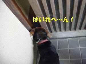 0820100518_022_15