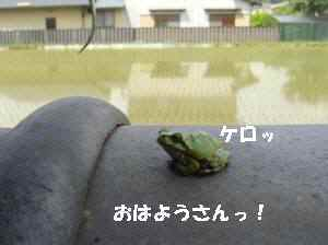 0820100531_001_11