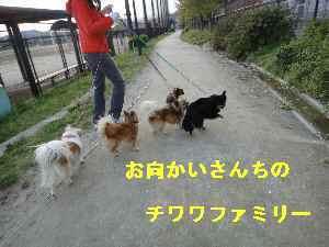 Dsc01338_1